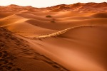 lessons from marathon des sables