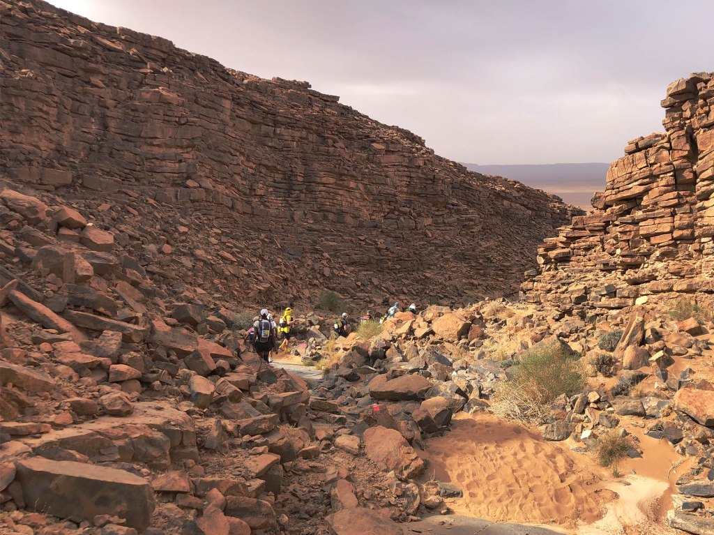 Marathon des Sables type 1 diabetes 31